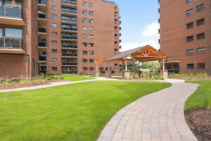 Fully Renovated 1 Bed in Burlington! Luxury Unit, Pet Friendly!
