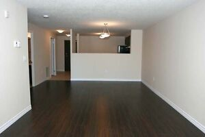 Luxury 1 Bedroom 5 Appliances, In-suite Laundry! (Stanley Park)