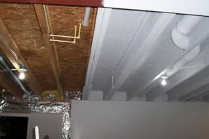 QUOTE NEEDED : Spray Paint interior basement ceiling quote