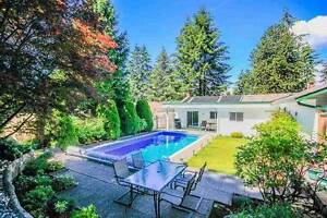 Fully Furnished Remodelled beautiful 3 bdrm with pool
