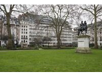 St James's SW1Y Modern, Self Contained Office | Private & Serviced, Furniture Optional
