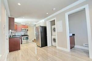 950 sq ft PET FRIENDLY BEAUTIFUL NEW LANEWAY HOUSE TWO BEDROOM