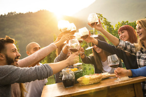 WINE TOUR - 12 person all inclusive package Prince Edward County