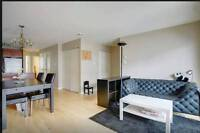 Modern 2BR apartment close to DT Montreal