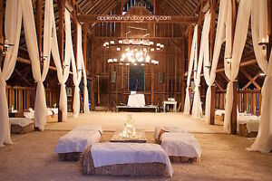 Golden straw bales for your weddings / special events!
