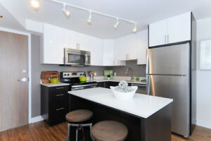 Pet Friendly Luxury 1 Bed Apt in Centretown - Gym Included!