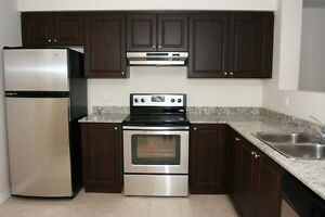 Luxury 2 bedroom/2 bath + 5 appliances near Cambridge Centre!