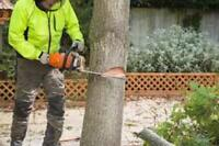 TREE REMOVAL - 30% off this HOT week!