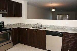 Luxury 1 Bedroom 5 Appliances, In-suite Laundry! (Stanley Park) Kitchener / Waterloo Kitchener Area image 4