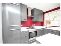 STUNNING TWO/THREE BED GARDEN FLAT -MINS TO TUBE