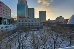 $1700 / 2br - 839ft2 - Magnifique condo downtown Montreal July 1