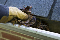 Eavestrough/gutter cleaning, tree removal etc.