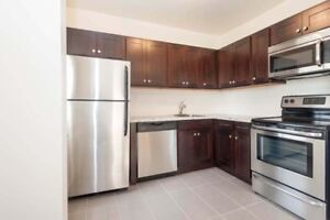 Renovated & Pet Friendly Apt on the Hamilton Mountain!