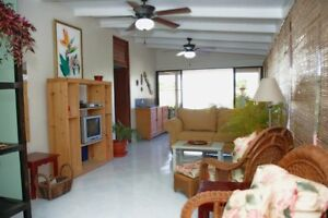 2 weeks, 2 bedroom penthouse in caribean; 2 good
