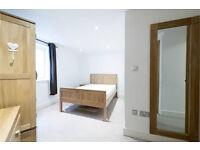 Stunning 2 Double Bedroom Flat To Rent - Battersea Park - 430PW