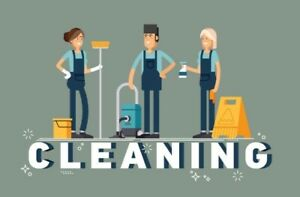 Laynes Way Professional Cleaning