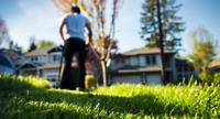 Cleaning and lawn service