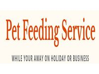 Cat/Pet sitting/feeding/caring Service