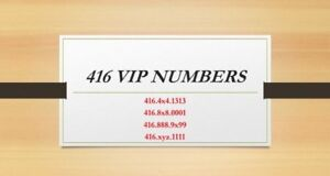 Best choice of VIP phone numbers