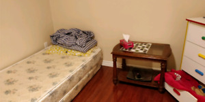 Seperate Bedroom w/ Washroom for Rent