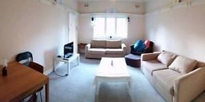 Great 3 bedroom apartment in Bondi beach Bondi Beach Eastern Suburbs Preview