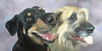 Painted portraits of your pet