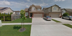 close casino/NiagaraCollege,whole 2 storey house(5 bedroom,3.5WR
