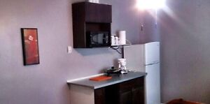No Lease $775.00/month, One Person, fully furnished  Edmonton Edmonton Area image 3