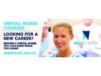 Be someone, be a dental nurse ! Learn and earn at the same time !