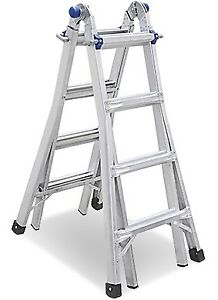Multi-Function Ladder