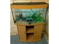 Juwel Vision 180L Tropical Fish Tank Setup incl External Filter