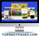 Established Turnkey Websites To Buy