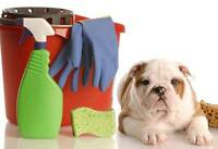 A.C.L .CLEANING Your Affordable Cleaning Lady