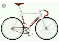 Bianchi Pista Sei Giorni Fixed Gear Track Bike