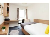 En-Suite Student Room // Spring Gardens Property // £159 pw // All bills inclusive