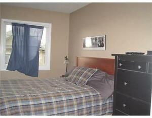 A large bedroom available Jan. 1st. close to UW and shopping Kitchener / Waterloo Kitchener Area image 2
