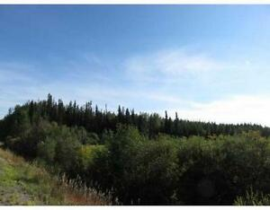 80 acres for Sale-New Price!