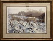 Whitetail Deer Prints