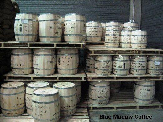 100% Jamaican Blue Mountain Coffee Beans Fresh Roasted Daliy 7 / 1 Pound Bags
