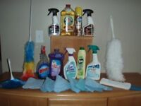 Cleaning Lady,Independent,Professional Service in Mississauga