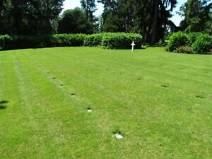 Cemetery plot for sale