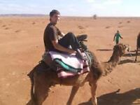 Volunteer in Morocco and celebrate the New Year in the Desert
