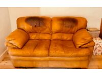 Perfectly Good Leather 2 Seater Sofa