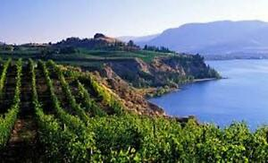 HOT BUY! MOTEL IN PRESTIGIOUS WINE REGION, KELOWNA, BC