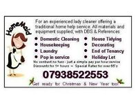 Domestic Cleaning Housekeeping Service Local Cleaning Lady