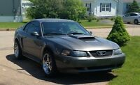2004 Ford Mustang *40th Anniversary Edition*