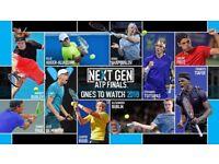 2 x tickets Nitto ATP World Tour Tennis Finals, 18th November, o2 arena