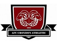 Male U15 Goalkeeper Needed For Top Of The League Semi Pro Team AFC Croydon Athletic Colts