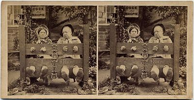 MEDIEVAL STOCKADE BUILT FOR TWO STEREOVIEW - Medieval Stockade