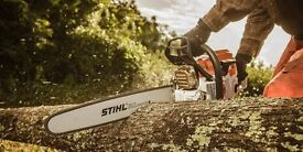 TREE SURGEON - 7 DAY SERVICE - TREES REMOVED - MAINTAINED - HEDGES & STUMPS ETC, GARDEN CLEARANCES.